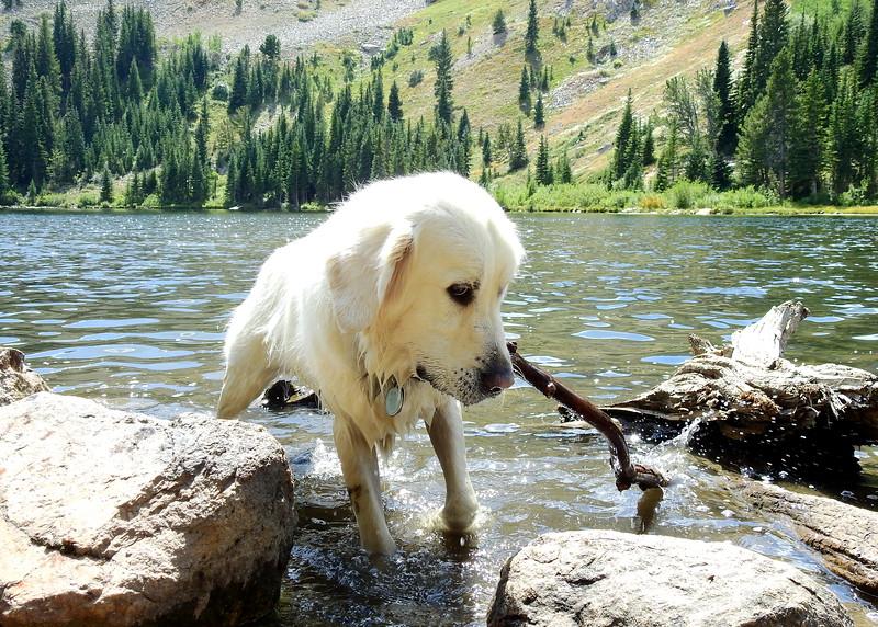 Hessie Trail to Lost Lake 2019 (132).JPG