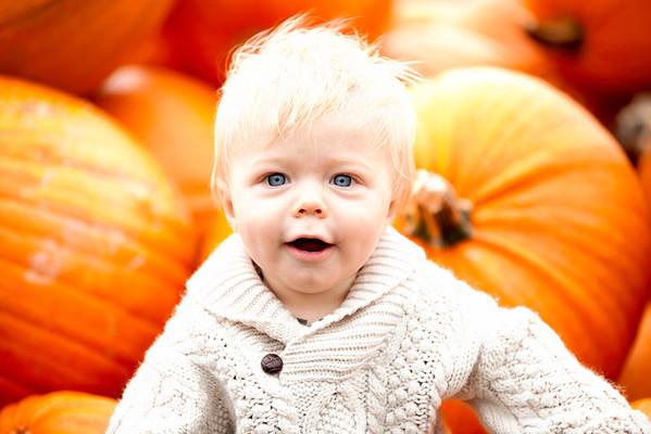 Parker Pumpkin Mini