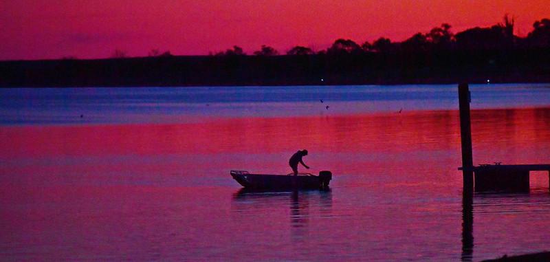 Lake Bonney Carp Fishing Comp