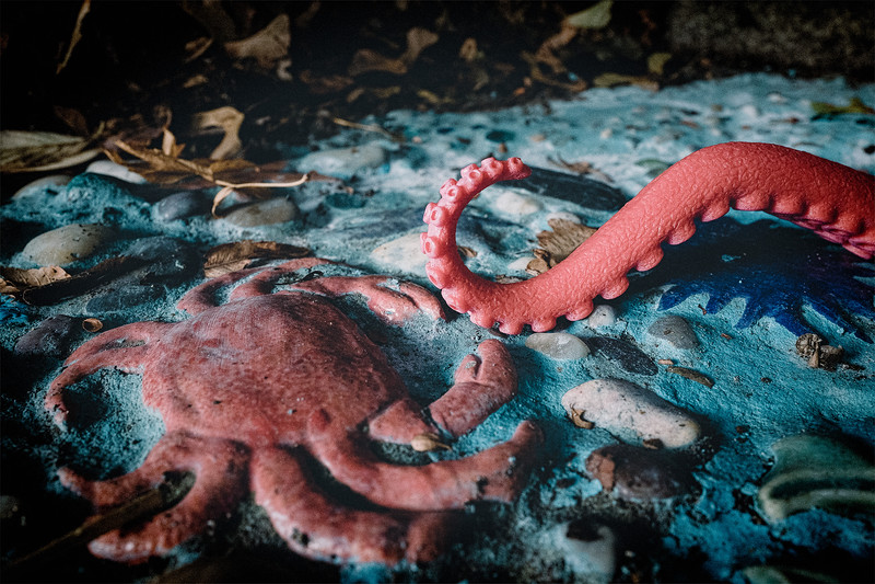 Pinky's Crabby Neighbor
