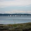 Bainbridge Island Ferry (SEA) - 2