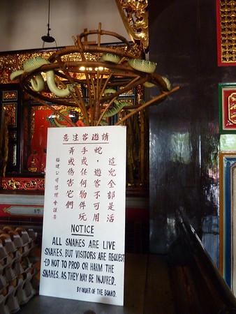 Snake Temple - Penang