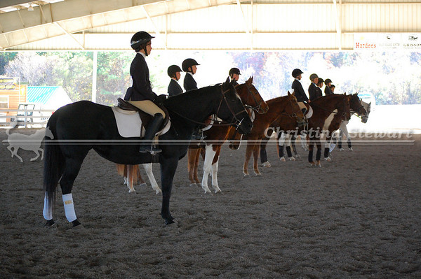 IEA Horse Shows