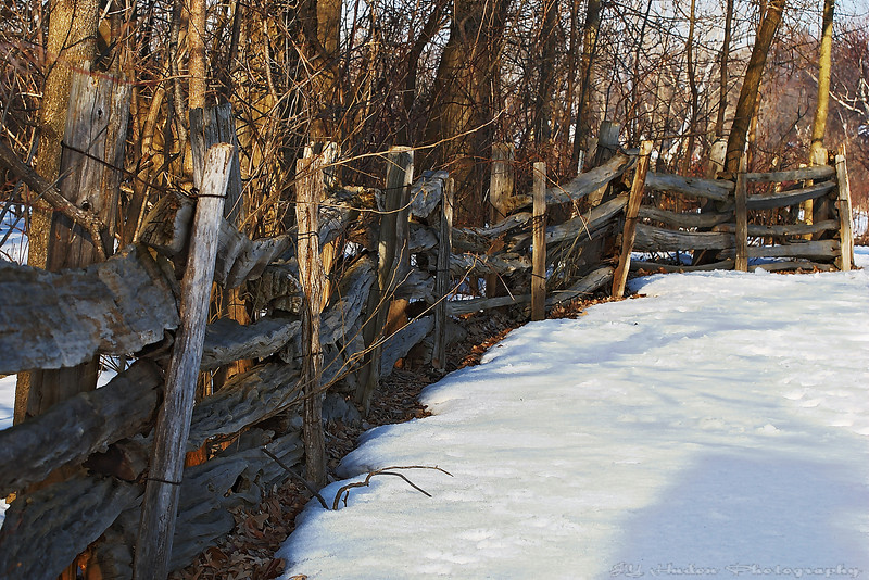 Feb 28th, 2008 - Snow patch by the fence, areas in shadows are cooler. I was inspired by the texture of this rustic fence, blending so well in the environment.  Have a great day --JY