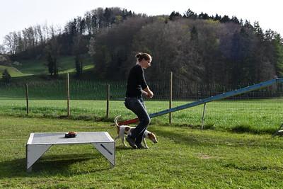 Cours Sport plaisir du 22 avril 2019