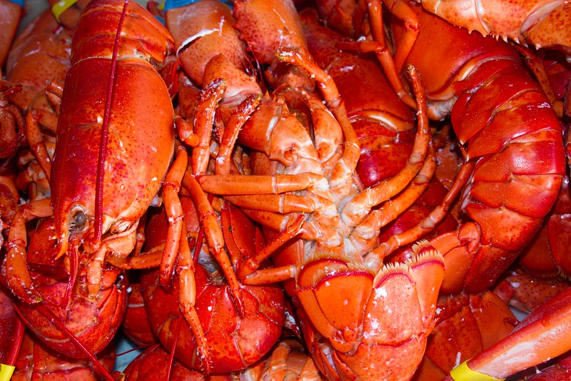 2014 09 20_Lobsterfest_3867.CR2