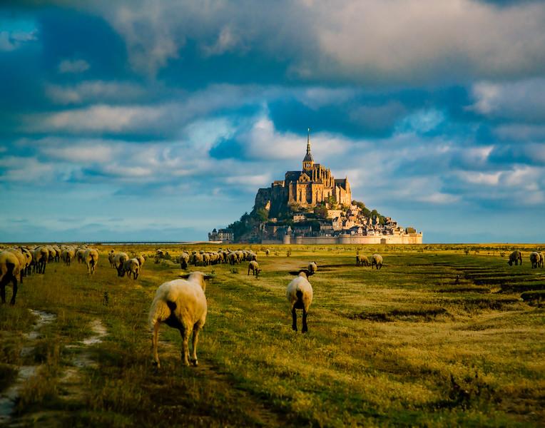 Mont Saint Michel 11x14.jpg