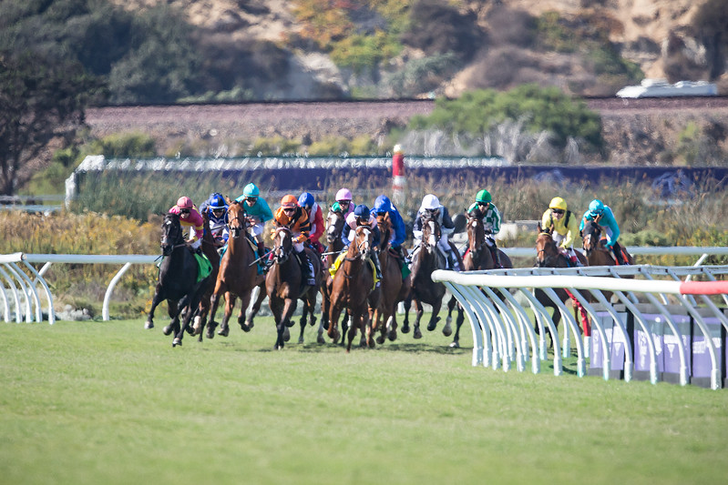 Wuheida (Dubawi) wins the BC Filly & Mare Turf at Del Mar on 11.4.2017. William Buick up, Charlie Appleby trainer, Godolphin Stable owner. Zipessa led most of the way around.