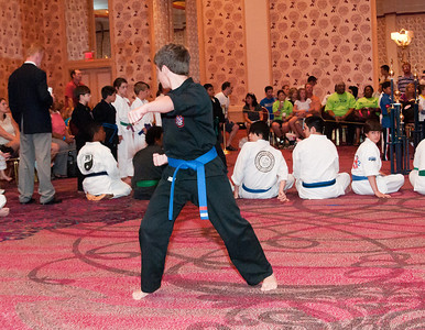 2010 - Ryan Karate Worlds