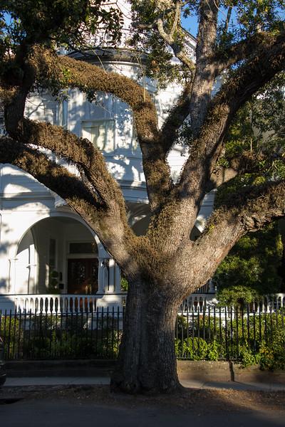 20161126_Charleston_0243.jpg