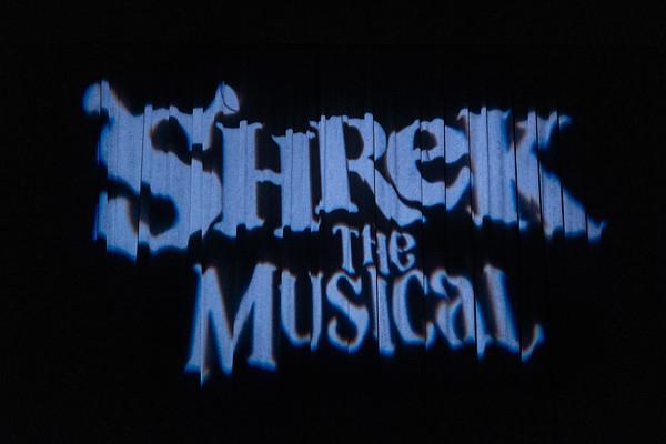 Shrek Act 1 Final Dress