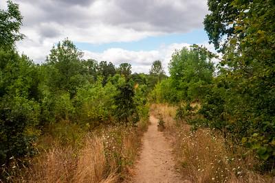 3-Creeks Natural Area