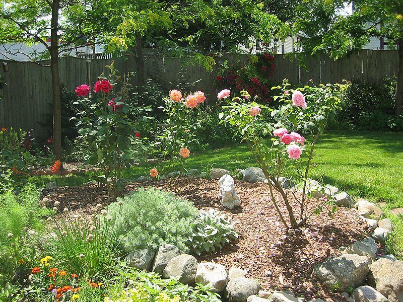 garden-2002-06-0075_std.jpg