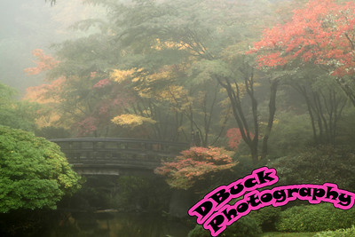 10-22-09 Japanese Garden