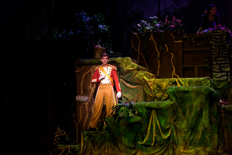 20150423 Into the Woods8863.jpg