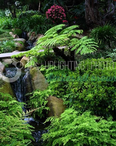 Garden Falls_batch_batch.jpg