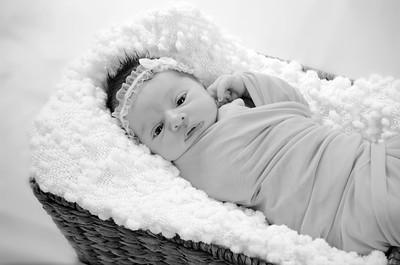 Amelia Newborn Portraits
