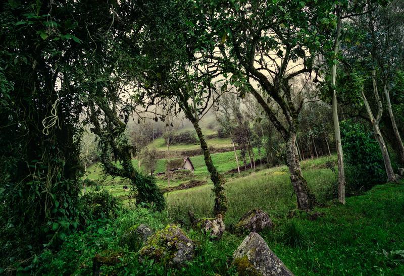 Hills of Pillaro.jpg