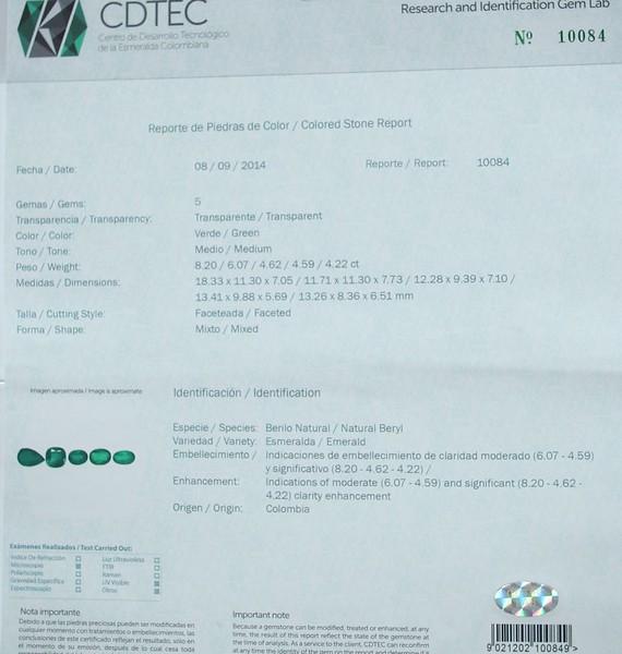 DF31 CDTEC.jpg