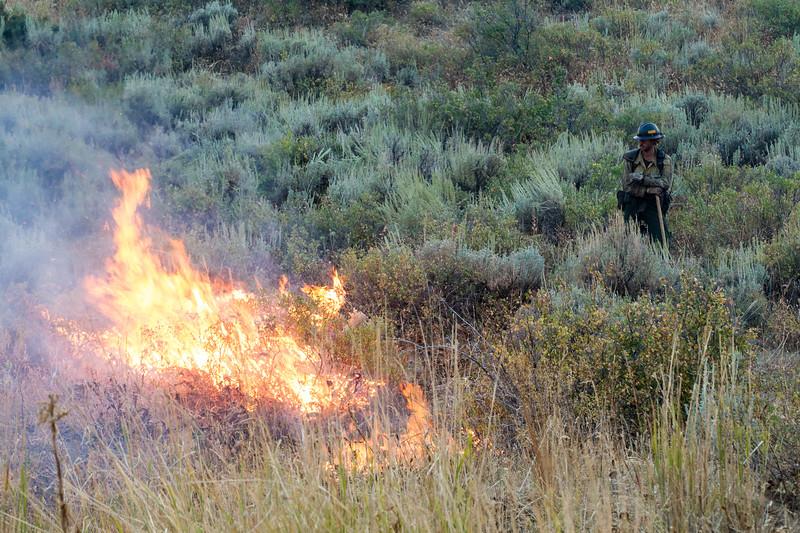 Aug 24 FIRING OPERATIONS 11.jpg