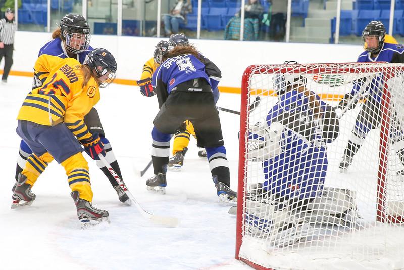 20150129 QWHockeyatUOIT 1123.JPG