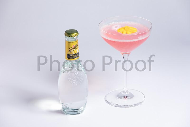 BIRDSONG Schweppes Cocktails 092.jpg