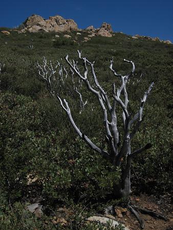 Garnet Peak, Overlooking Anza Borrego Desert - May 21, 2011
