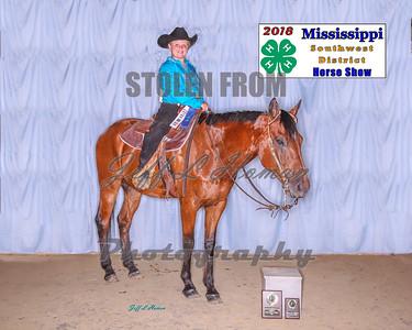 2018 Southwest District Horse Show