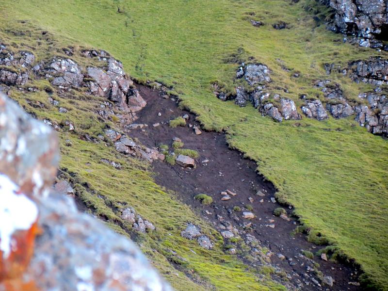 Scotland Downlaod 14 Oct 2014 Trotternish 110.JPG