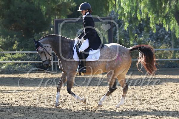 Spirit Equestrian October 2019