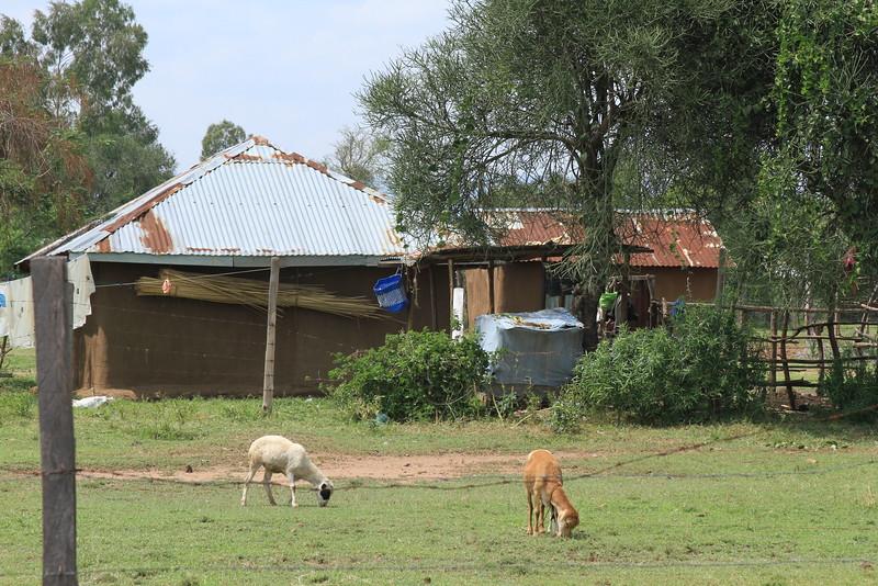 Kenya Part1 '15 1042.JPG