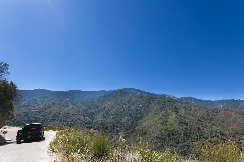 Sequoia_0043.jpg