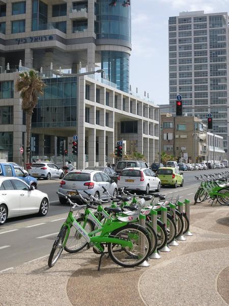 Bike rentals.
