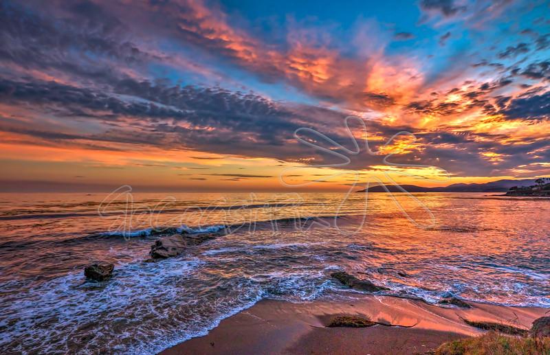 Shell Beach_74
