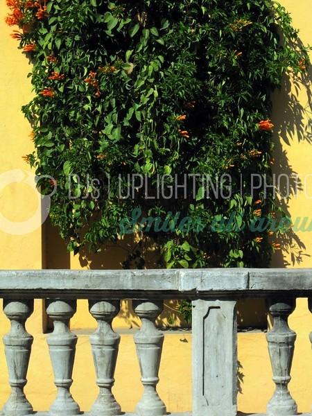 Colorful Wall_batch_batch.jpg