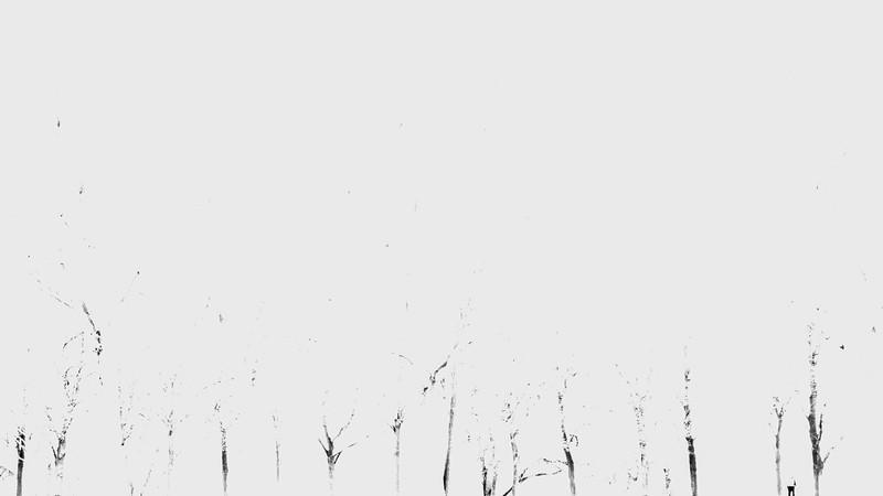 Haiku_Workshop_2014-66.jpg