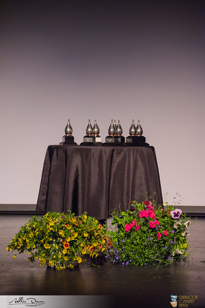 2019 CCT Abbott Awards (45).jpg