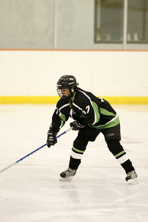 High School Hockey 2011-12