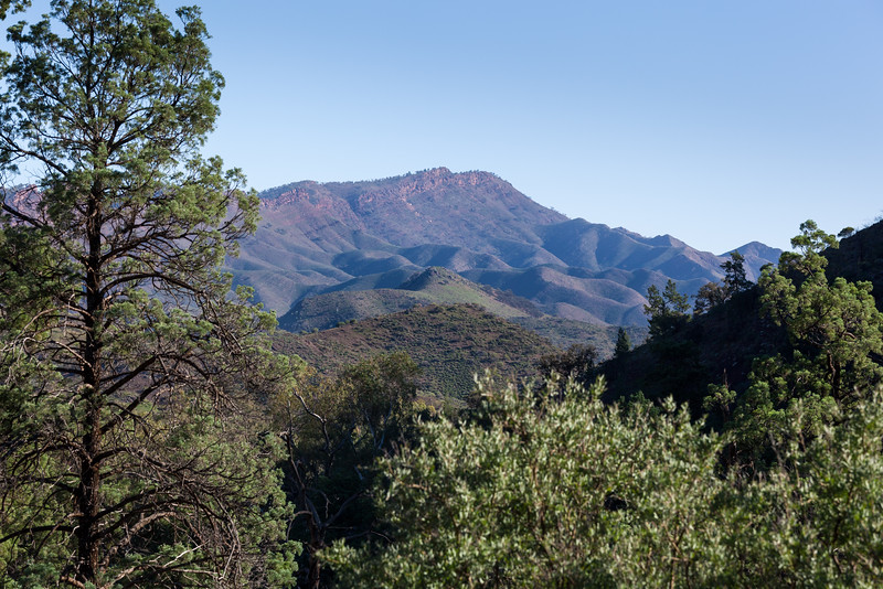 Trezona Range