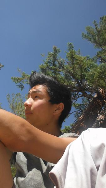 sequoia 114.JPG