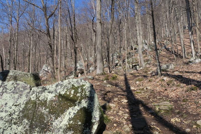 Ewing Trail - 2,800'