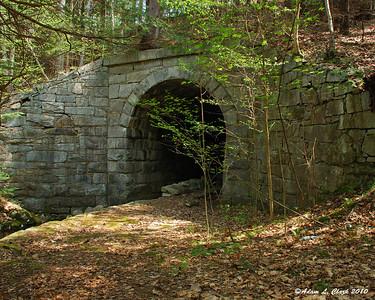 Railroad Bed Tunnel