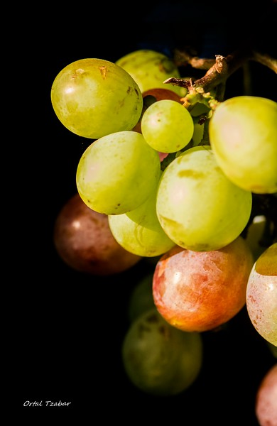 green and red grapes.jpg