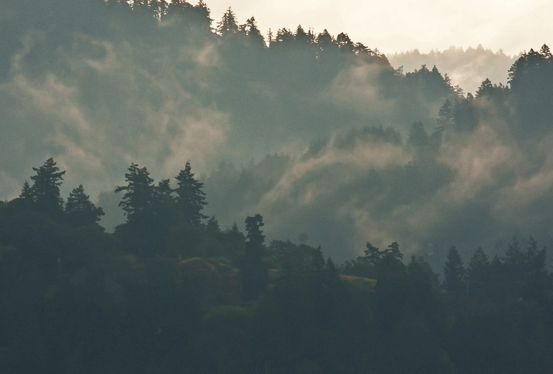 Morning mist in the Sooke Hills