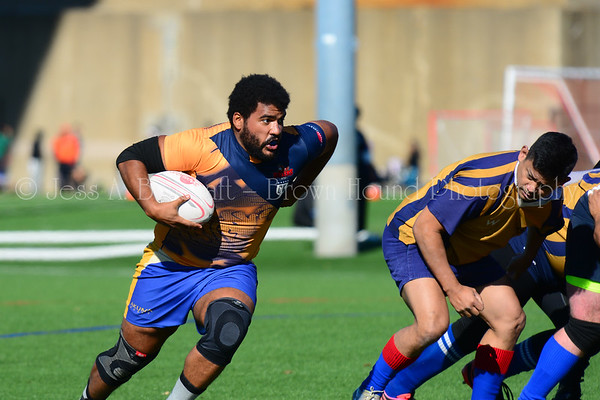 Gotham Old Boys vs Developmental & Gotham Knights vs Village Lions rugby