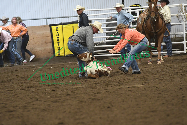 Cardston Day 1