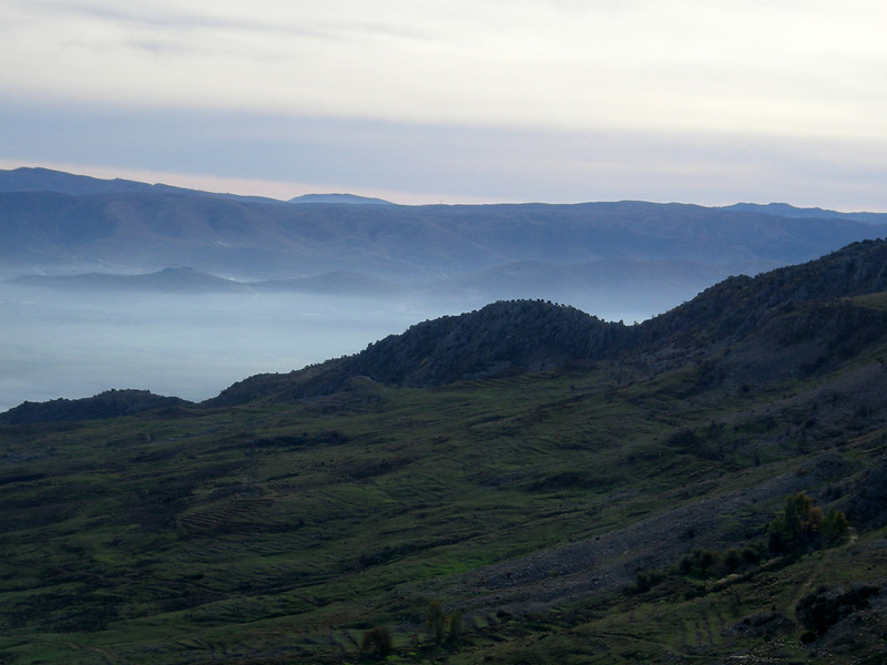 morning mist in the Bekaa Valley