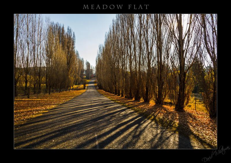 Meadow Flat