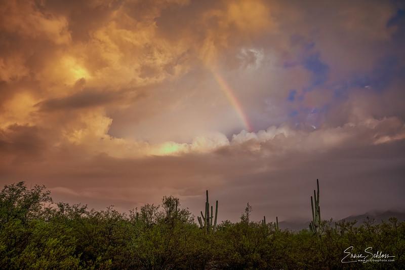 Sabino Sunrise 9-27-2019c-.jpg
