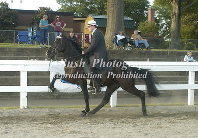 CLASS 16 PARK PERFORMANCE SPECIALTY